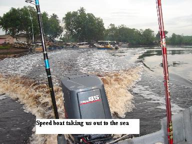 speed boat merchung