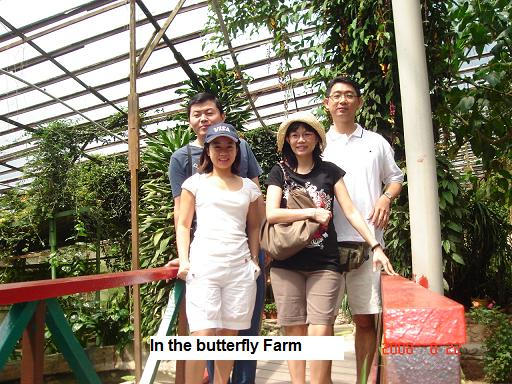 cameron highlands butterfly farm