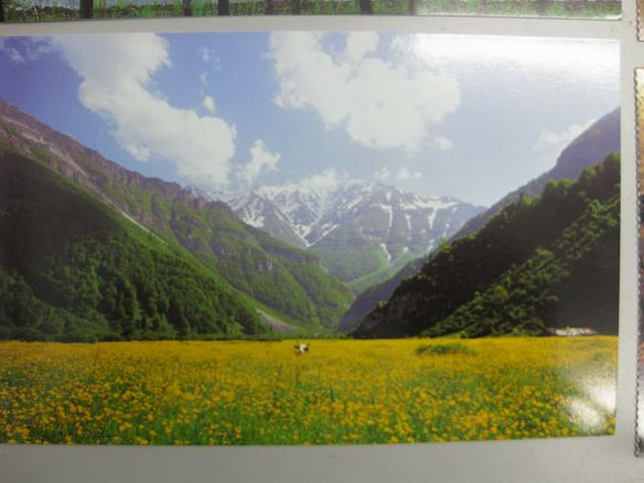 iran post card