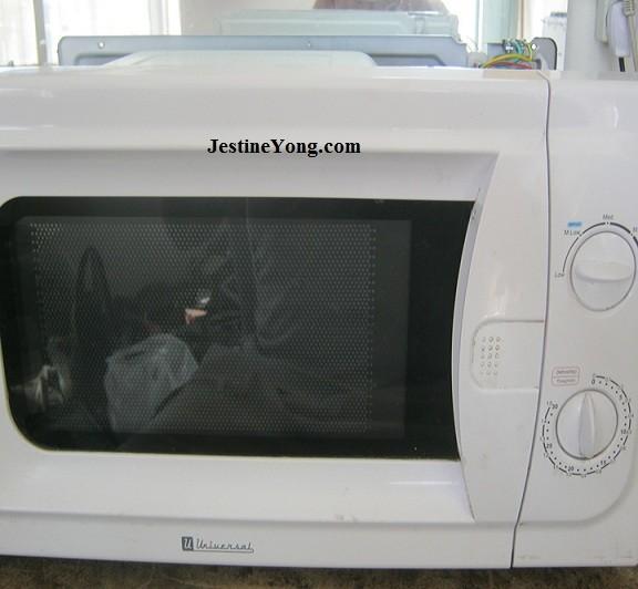 microwaveovenrepair