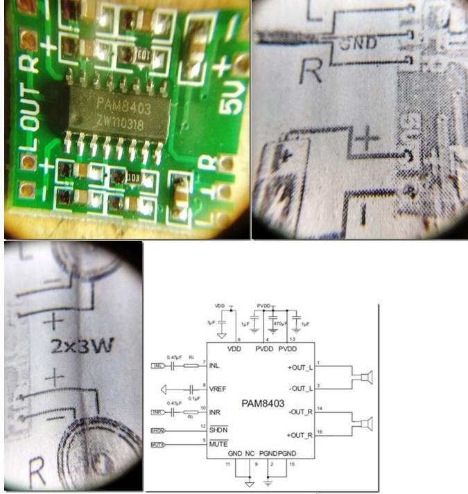 dvd circuit